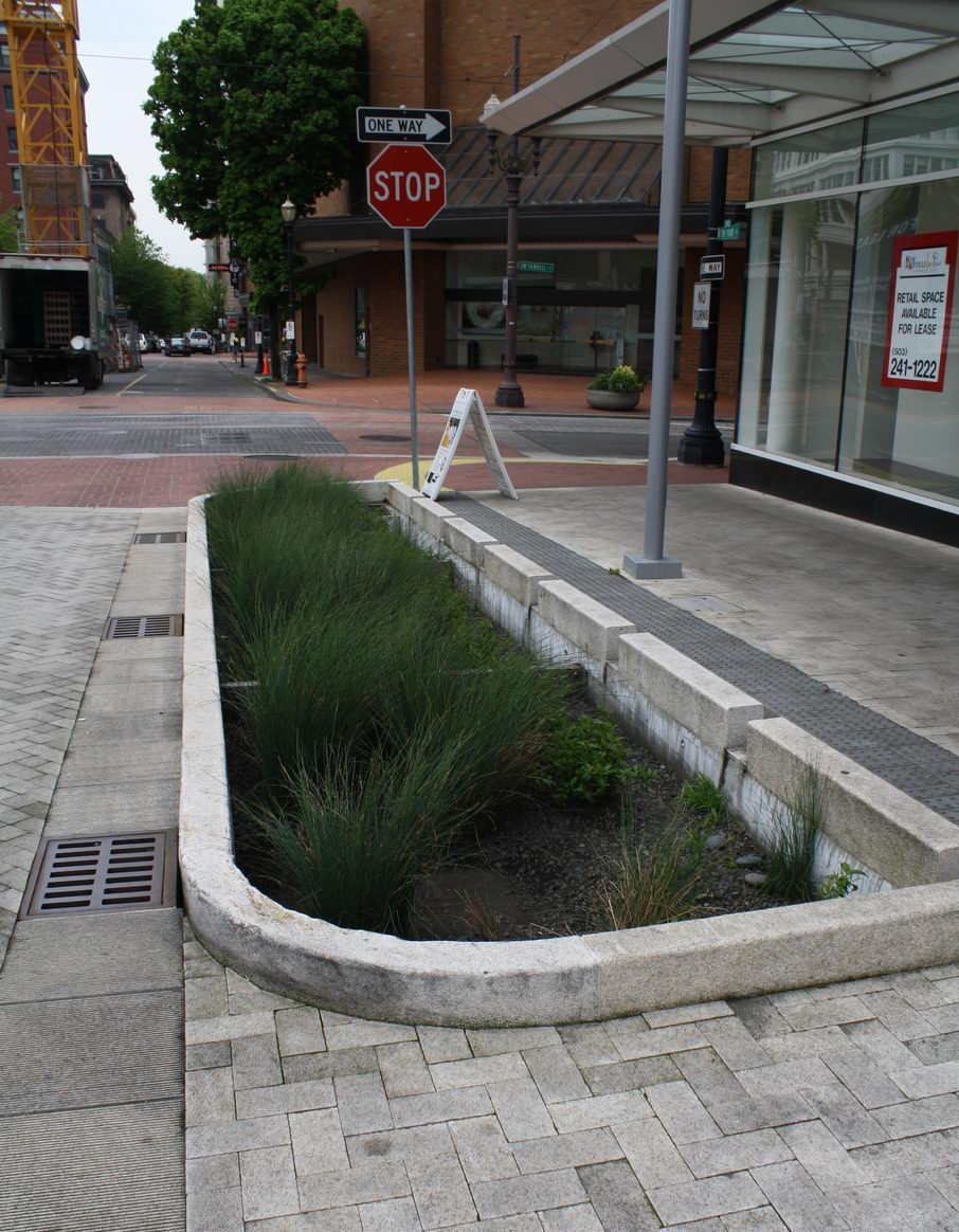 city of calgary stormwater management and design manual