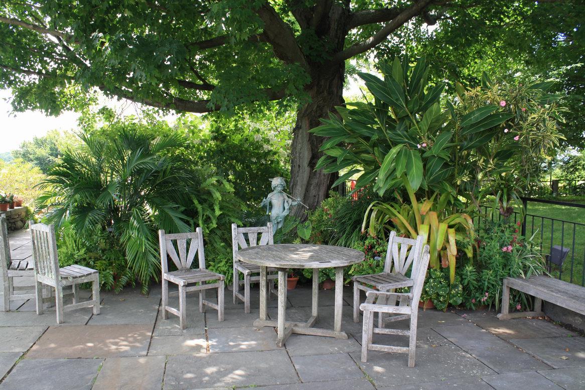 Botanic Gardens Land Perspectives