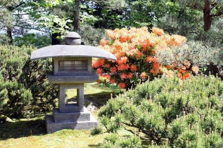 Portland Japanese Garden B