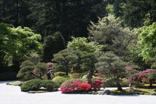 Portland Japanese Garden D