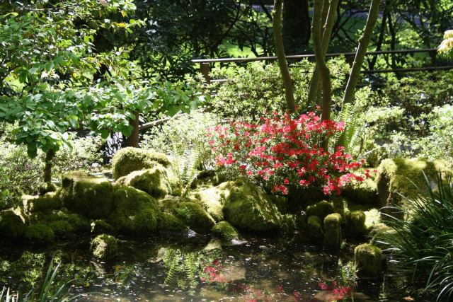 Portland Japanese Garden E