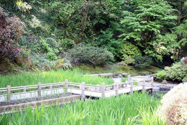 Portland Japanese Garden H
