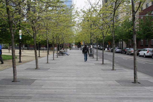 Streetside boardwalk, Portland OR