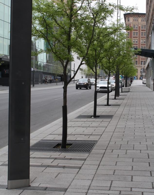 Montreal plazas 8