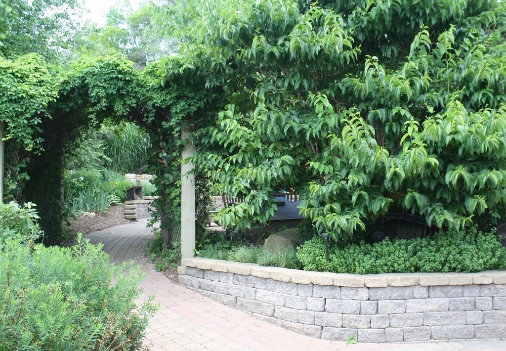 C   Scent Garden