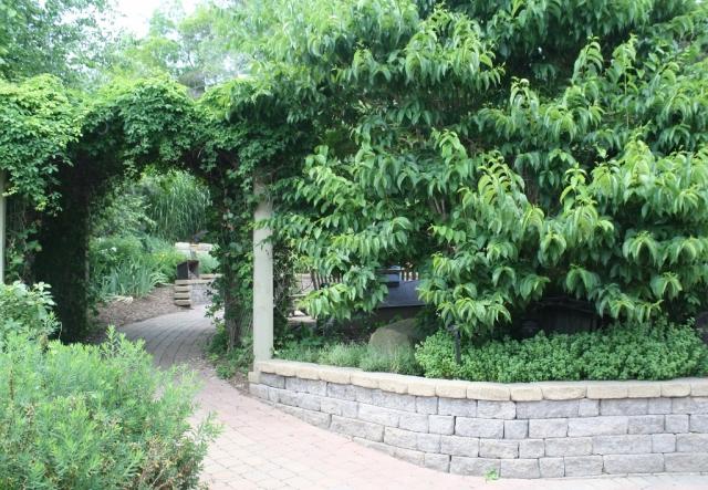 C - scent garden