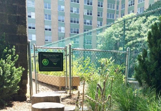 10 - after - garden area
