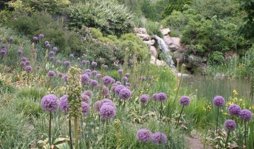 Red Butte Garden 1