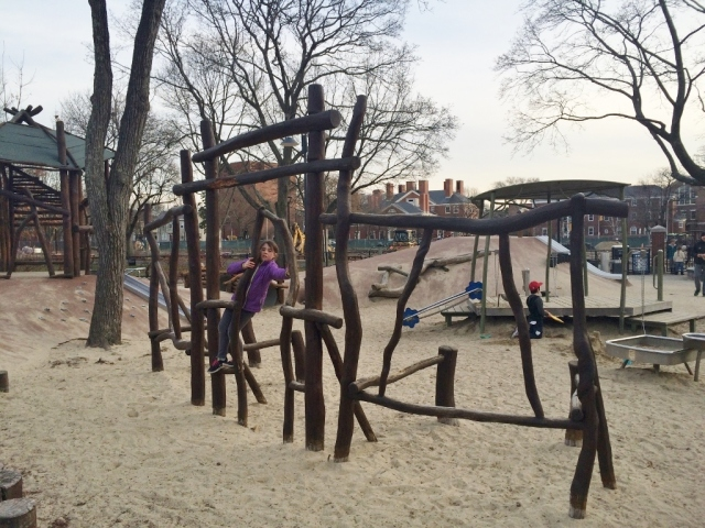Cambridge Common Playground 1