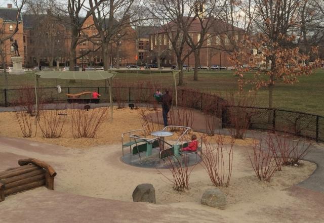 Cambridge Common Playground 3