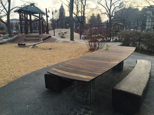 Cambridge Common Playground 8